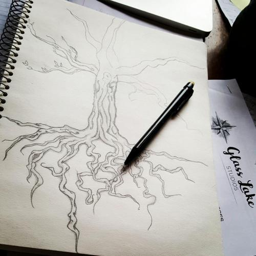 Deanna Deacon Coaching Tree Diagram