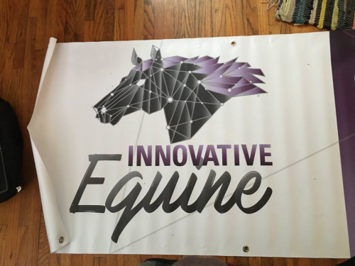 Glass-Lake-Studios-Graphic-Design---Innovative-Equine-6