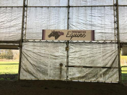 Glass Lake Studios Graphic Design - Innovative Equine 3